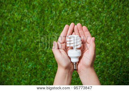 Human hands holding energy saving lamp close up