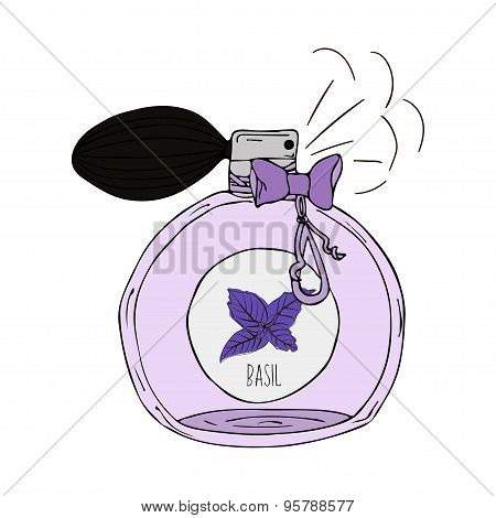 Hand Drawn  illustration of a perfume bottle with the scent of basil