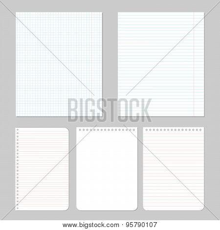 Set of different paper. Vector eps10 illustration