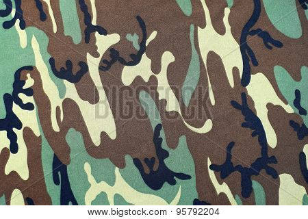 Camouflage As Background