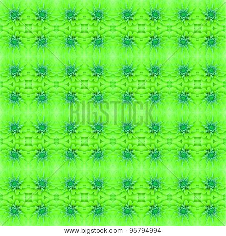 Zinnia Flower Seamless Pattern Background