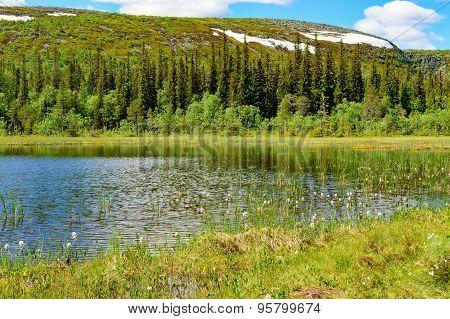 Lovely Mountain Lake
