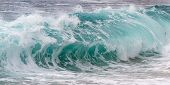 picture of spayed  - close up shot of a crashing wave as a background