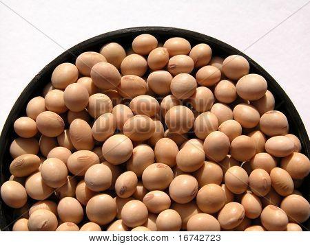 soya-beans