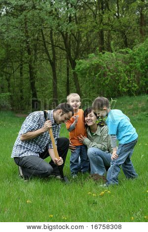 father mother and sons planting a tree - working together