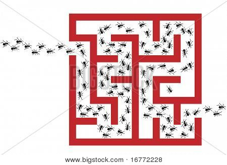 An insect exterminator is needed to solve an Ant Pest Problem Maze Puzzle.