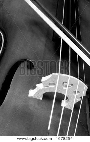 Cello And Bow
