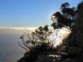 stock photo of fynbos  - Half way up Lions Head mountain  - JPG