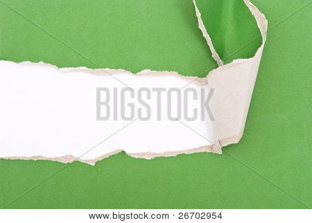Green torn paper