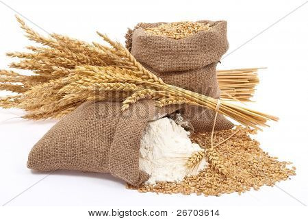 Flour and wheat grain