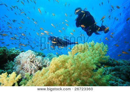 Scuba Taucher erforschen ein korallenen Riffes