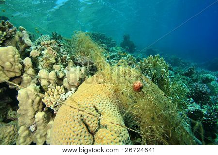 Environmental Problem - abandoned fishing net on coral reef