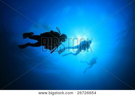 Scuba Divers silhouettes against sun in blue water