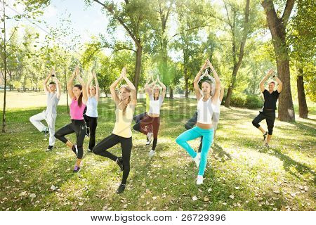 tree position,  large group of young people doing yoga, outdoor