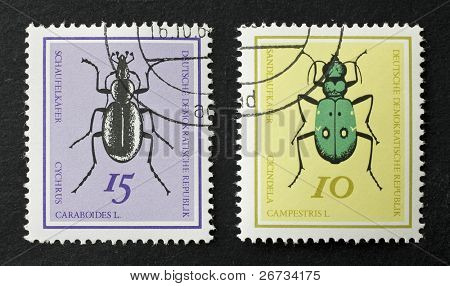 WEST GERMANY - CIRCA 1968: two stamps printed in west Germany show illustrations of two Coleoptera: Cychrus Caraboides and Cicindela Campestris. West Germany, circa 1968