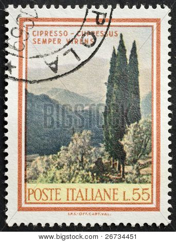 ITALY - CIRCA 1968: a stamp printed in Italy shows image of Cupressuss sempervirens, the typical Cypress native to the Mediterranean region. Italy, circa 1968