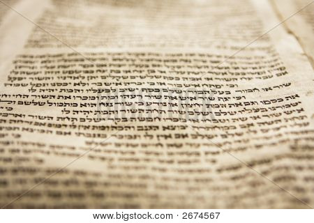 One Line Of Torah