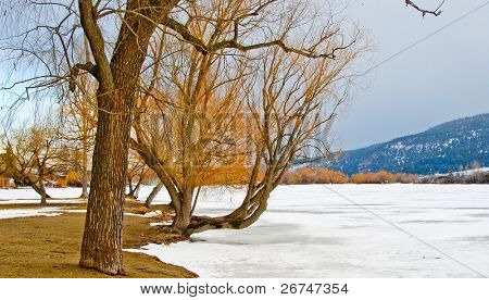 Winter view at Wood lake in Okanagan Valley, British Columbia, Canada.