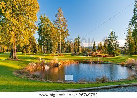 Golf lindo lugar com lindo Lago verde, no inverno