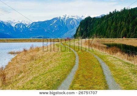 Fragment des Pitt Lake Trail in Vancouver, Kanada.