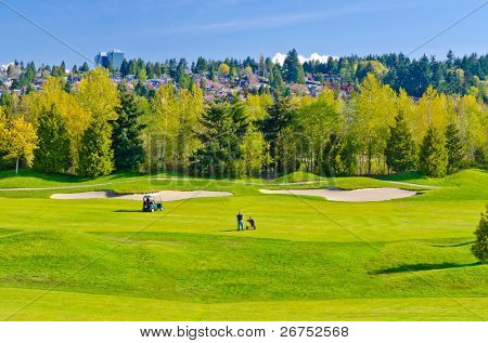 Golf place with gorgeous green and nice forest view.