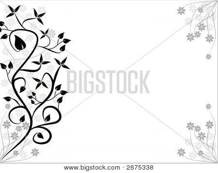 Black And White Floral Background