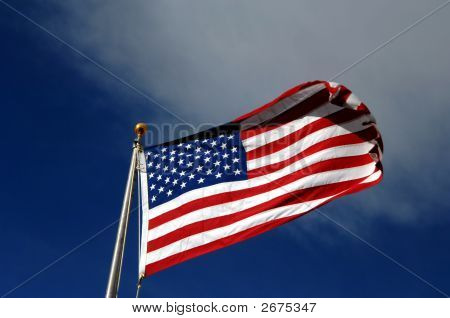 American ganz