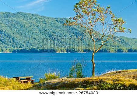 Picnic table at beach of Saltery Bay, Vancouver, Canada.
