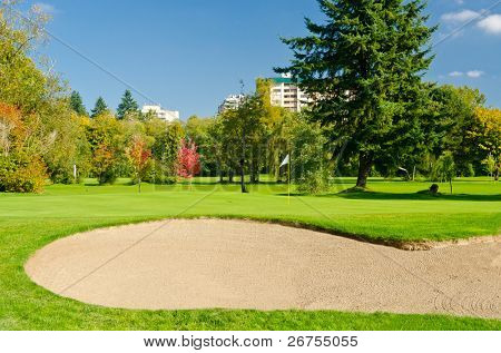 Golf place with gorgeous green and nice forest and urban view.
