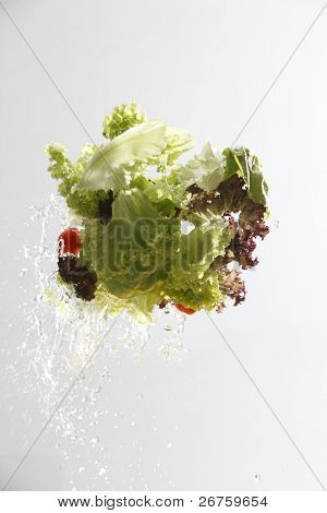 close up of the washing salad with water splash