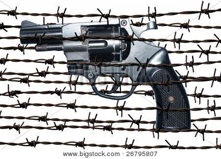 an image of gun in barbed wire fence