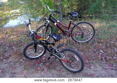 Two Bicycles