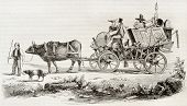 picture of ox wagon  - Dowry of a Swiss woman in Lucerne - JPG