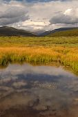 picture of colorado high country  - Colorado pond and wild grasses in the high country mountains - JPG
