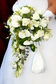 stock photo of white flower  - Wedding series 20 - JPG