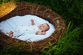 New Home For Newborn Baby. Newborn Baby Enjoys Carefree Life. Providing A Healthy Start In Life To E poster