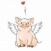 Hand Drawn Naughty Pig With Angel Wings. Cute Funny Piglet And Heart Isolated On White Background. R poster
