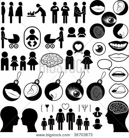 Colección de iconos relacionados con humanos