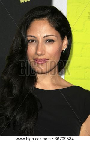 LOS ANGELES - SEP 10:  Tehmina Sunny arrives at