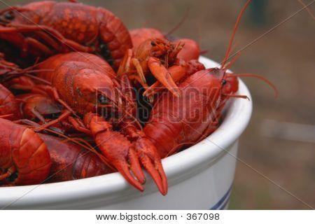 Bowl Of Boiled Crawfish