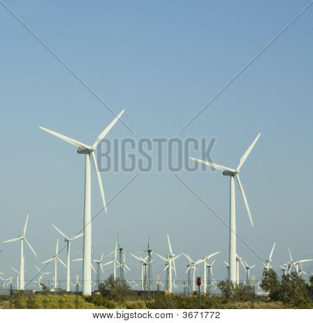 Electricity Environmental Friendly