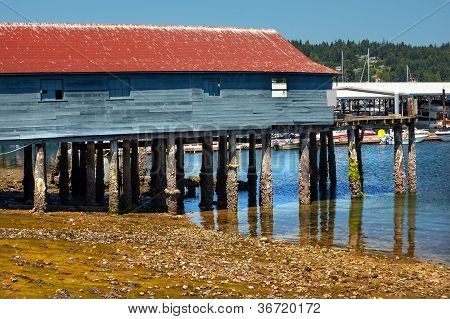 Old Fishing Dock Low Tide Gig Harbor Washington State