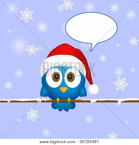 Cute Blue Christmas Bird