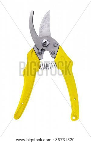 Gardening Shear With Yellow Handle on White Background