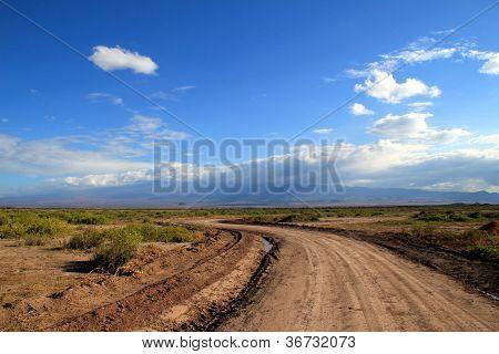 Road through the savannah