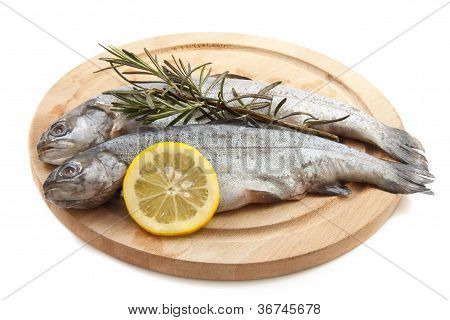 Trout On Wood
