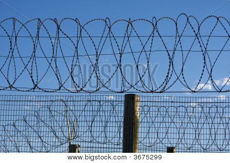 Prison Barbed Wire