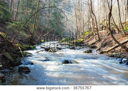 Oncoming Stream
