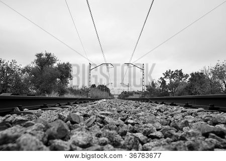 Way Of Train