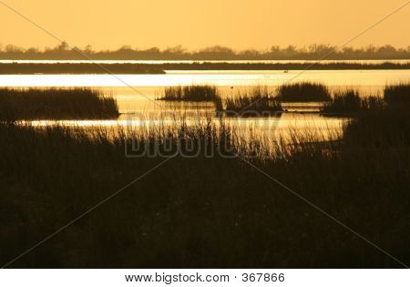 Marsh Sunset